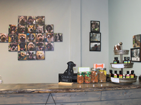 Dirty Dog Depot   Tega Cay, SC   dog and cat grooming and supplies   inside store